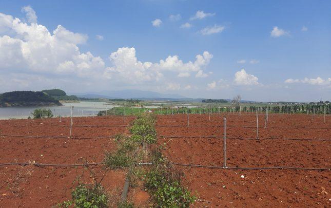 Bán Đất Đức Trọng, Lâm Đồng Mặ Tiền Sông Đa Nhim